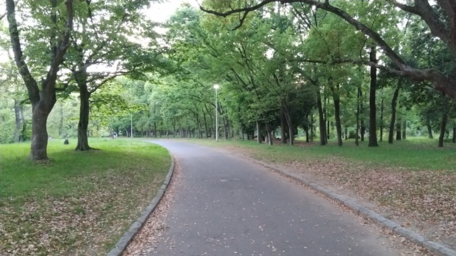 大泉緑地公園 ウォーキング